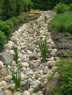 dry creek bed. Like the idea of adding the Siberian iris; nice spacing effect.