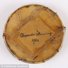 Fungus from Sir Alexander Fleming's antibiotic research to go under the hammer Alexander Fleming, Under The Hammer, Fungi, Mail Online, Daily Mail, Things To Sell, Mushrooms