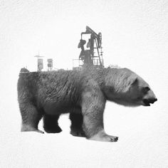 Double Exposure GIFs Of Wild Animals Show How Humans Destroy Their Habitats