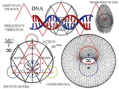 The cosmic comparison between the cosmic web and the neural net shows that there is an existence in a celestial form that lives on a higher plane in the heavens which is entangled with all other known verses that God created