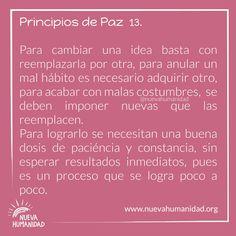 (20) SocialGest Calendar, Patience, The Little Prince, Peace, Life Planner