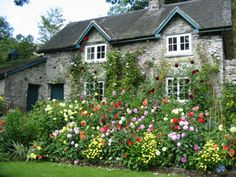 What A Delightfully Colourful Front Garden Cottage Gardens Country Style