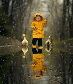 Animated gif shared by Candice. Find images and videos about cute, boy and gif on We Heart It - the app to get lost in what you love. Walking In The Rain, Singing In The Rain, Photo Zen, Rain Gif, Baby Animals, Cute Animals, Foto Gif, I Love Rain, Rain Days