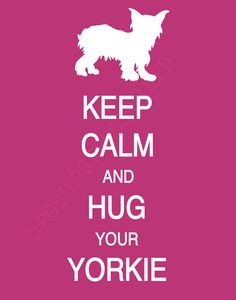 Keep calm and hug your yorkie.....even if she doesn't want to cuddle at the moment