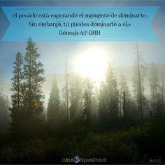 Génesis 4:7
