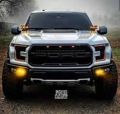 Raptor Car, Ford Raptor Truck, Ford Ranger Raptor, Ford Pickup Trucks, New Trucks, Custom Trucks, Cool Trucks, Cool Cars, Car Ford