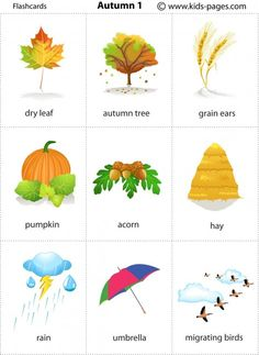 English vocabulary - Autumn