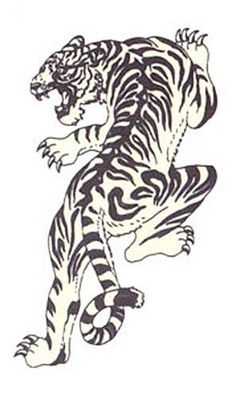 Japanese Tiger b tattoo for thigh piece.
