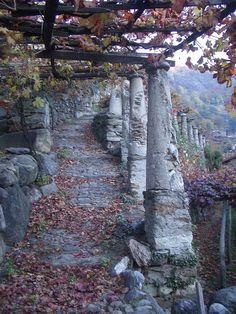 "Typical Vineyard and Pathway (""Via Francigena""), Settimo Vittone, Turin, Italy {http://en.wikipedia.org/wiki/File:Settimo_Vittone_Tupiun.JPG}"