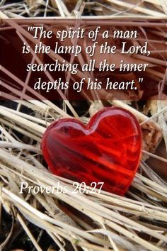 The spirit of a man is the lamp of the Lord, searching all the inner depths of his heart. Proverbs 20:27
