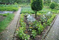 instagram school garden - Google Search