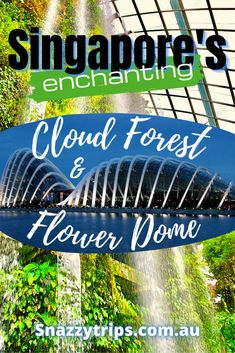 The Enchanting Cloud Forest Dome And Flower Dome In Singapore #indoorgardens #singaporegardendomes #singaporeconservatories #singaporeblog #singaporetravel #singaporeguide #singaporeflowerdome #singaporecloudforest #snazzytrips Countries To Visit, Places To Visit, Singapore Travel Tips, Indoor Waterfall, Asia Travel, Travel Abroad, Gardens By The Bay, Travel Inspiration, Travel Ideas
