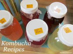 Our Favorite Kombucha Recipes {So Far} - Lots of berry flavors here! All recipes are for quart jars, so half the add-ins for 16 oz bottles. Jun Kombucha, Kombucha Drink, Kombucha Flavors, How To Brew Kombucha, Probiotic Drinks, Kombucha Brewing, Blueberry Kombucha, Pomegranate Smoothie, Health