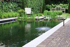 ombouw zwembad naar zwemvijver, door Het Groene Plan