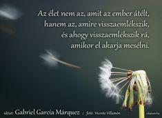 Gabriel García Márquez #idézet Movie Posters, Inspiration, Google, Gabriel Garcia Marquez, Biblical Inspiration, Film Poster, Billboard, Film Posters, Inspirational