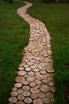 tree rings ... going out going in