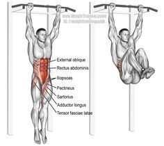 Hanging leg and hip raise. One of the most effect core exercises. See website for details. Muscles worked: Rectus Abdominis, Iliopsoas, Tensor Fasciae Latae, Sartorius, Pectineus, Adductor Longus, Adductor Brevis, and Internal and External Obliques. Without contraction of abdomen, abs only act as synergists, and the exercise becomes just a hanging leg raise.