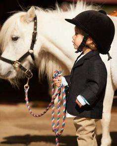 cuties #animals #horses #pony