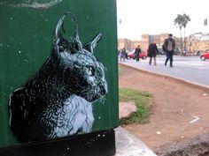 street art kat