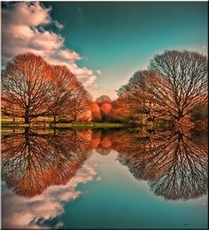 'Reflection' - photo by Reg Ramai, via Flickr; Hampstead Heath, London, England (a similar photo without a reflection is at https://www.flickr.com/photos/regramai/6716429641/in/photostream/ )