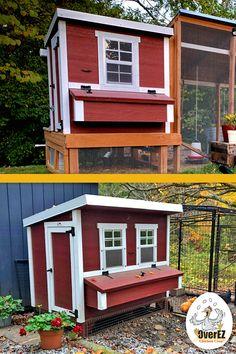 Backyard Chicken Coop Plans, Chicken Garden, Building A Chicken Coop, Chickens Backyard, Chicken Pen, Chicken Life, Backyard Farming, Ponds Backyard, Keeping Chickens