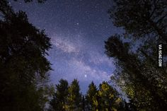 My first try in astro photography. Milkyway taken from Canada during a camping…