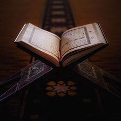 Online Hifz Quran Classes for Adults - Quran Hafiz Course Islamic Images, Islamic Pictures, Quran Wallpaper, Islamic Wallpaper, Quran In English, Quran Sharif, Quran Pdf, Online Quran, Quran Book