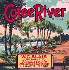 Clearwater Florida Cotee River Brand Orange Citrus Fruit Crate Box Label Art Print