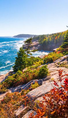 Acadia National Park Camping, Grand Canyon Camping, Best Places To Camp, Places To Go, Maine Road Trip, East Coast Travel, New England Travel, Amazing Nature, Beautiful Landscapes