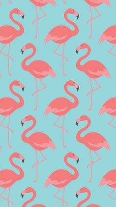 Flamingo Pattern. Tap to see more beautiful iPhone Wallpapers! Nature, animals, birds illustration drawing. - @mobile9