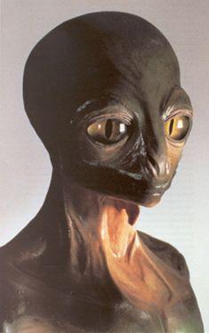 The Strange Tale of the Lost City of the Lizard People of Los Angeles - Alien UFO Sightings Les Aliens, Aliens And Ufos, Ancient Aliens, Alien Gris, Reptiles And Amphibians, Arte Alien, Strange Tales, Alien Concept, Space Aliens