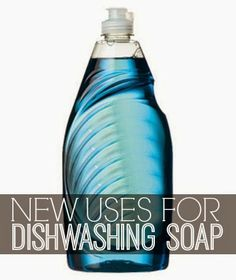 Inspiration For Moms: Six on Saturday: New Uses for Dishwashing Soap
