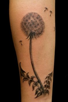 Dandelion clock  by butterfat78, via Flickr