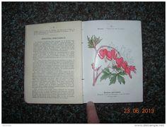 Livre 1902 ATLAS DE POCHE DES FLEURS DE JARDINS par Paul Hariot - 128 planches colorées