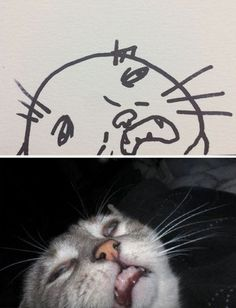 Crappy Cat Drawings That Are Actually Photorealistic - Neatorama