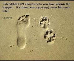 Canine friends stay in our hearts long after they've gone over the rainbow bridge Citation Souvenir, I Love Dogs, Puppy Love, Pet Loss Grief, Image Citation, Amor Animal, Animal Hugs, Animal Quotes, Dog Life