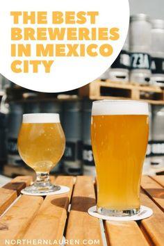 Craft Beer in Mexico City: The Best Craft Beer Bars, Breweries + Bottle Shops - Northern Lauren Beer Memes, Beer Quotes, Beer Humor, Black Ipa, Mexican Beer, Best Craft Beers, Bottle Shop, German Beer, Beer Bar