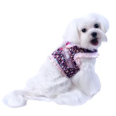 Audrey Dog Harness Top