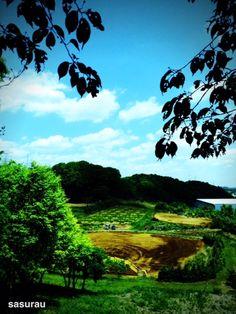 Kurokawa — sasurau