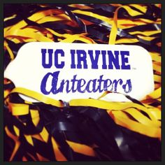 Go, 'Eaters! All day, every day!  #UCIrvine #UCI #zot #UCIPride