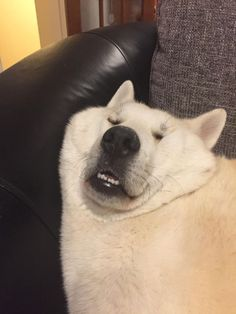 Sleeping like a baby.