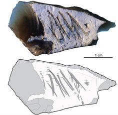 he engraved flint flake from Kiik-Koba, layer IV. Photo (top) and tracing (bottom). Engraved lines are indicated by dark-grey areas outlined in black, surface damage by light gray areas, flake scars by gray lines. Zigzag Line, Symbolic Art, Early Humans, Sketches Tutorial, Past Present Future, Culture, Bronze Age, Art Studies, Gravure