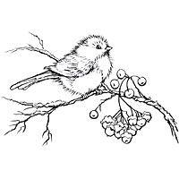snowbird.jpg 200×200 pixels