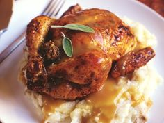 Cornish Game Hen recipe with 7 variations:  citrus or apricot glaze, Mexican spices, lemon basil, mustard herb, and garlic herb.  375 degrees for 1 hour. [TR]