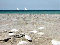 Southern Sweden - beaches, Falsterbo beach in Skane, Boda beach in the Island of Oland and Varamon beach in Lake Vattern