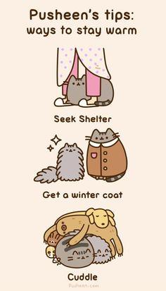 Les astuces de Pusheen le chat pour rester au chaud ;)