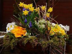 Frühlingsblüher - Wohnen und Garten Foto