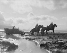 WWI, Oct 1916, Balkan Front; Serbian artillery horses dragging a Ford car out of the mud. © IWM