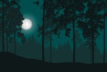 Wall Mural Vector Illustration Of A Night Landscape With Forest And Night Sky Night Forest Forest Illustration Night Illustration