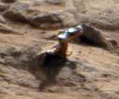 This is apparently a real (unretouched) photo taken by the Curiosity probe now making cinematic history on Mars. It's a random shot, and the whatever-it-is is best estimated at about 3 cm, just over an inch. I have an idea of what it is, but what is yours?  Rutledge Jr.